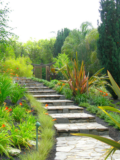New zealand flax plant home design ideas pictures for Landscape architecture new zealand
