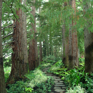 Photo of a huge traditional shade backyard stone landscaping in San Francisco.