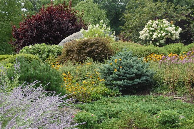 Eclectic Landscape by Mary-Liz Campbell Landscape Design