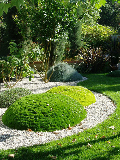 Garden Ideas Small Landscape Gardens Pictures Gallery: Fruit Tree Gardening Home Design Ideas, Pictures, Remodel