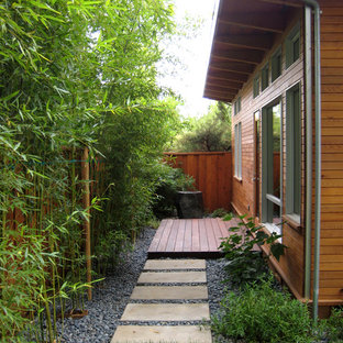 Inspiration for a traditional privacy side yard landscaping in San Francisco.