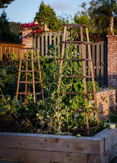 Классический Сад by Revolution Landscape