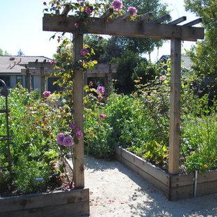 Edible & California Native Garden