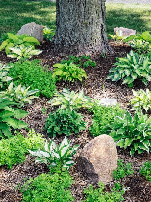 Shabby chic style garden design ideas renovations for Stylish vegetable garden