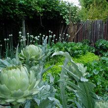 10 идей для огорода перед домом, который точно понравится соседям