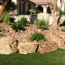 Southwestern Landscape by Green Planet Landscaping Pools & Spa