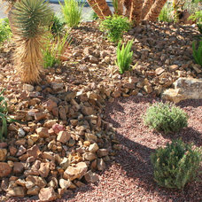 Contemporary Landscape by Green Planet Landscaping Pools & Spa