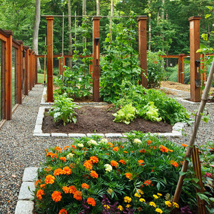 This is an example of a mid-sized traditional backyard gravel and wood fence vegetable garden landscape in DC Metro.
