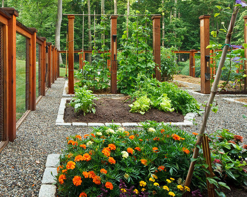 houzz  vegetable garden deer fence design ideas  remodel pictures, Garden idea