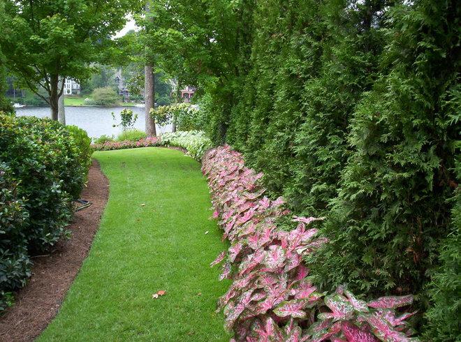 Traditional Landscape by Douglas C Lynn, LLC Landscape Architecture