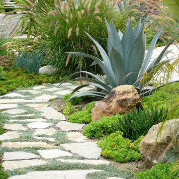 Encinitas Succulent Garden