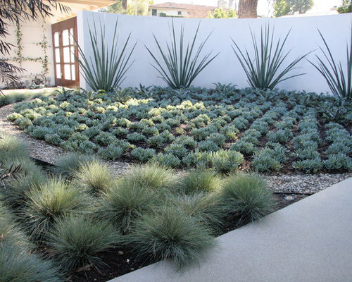 Design Ideas For A Contemporary Backyard Landscaping In Los Angeles.
