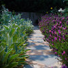 Border Protection: What to Plant Along Pathways