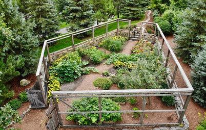 Как правильно: Создать огород в «неудобном» месте