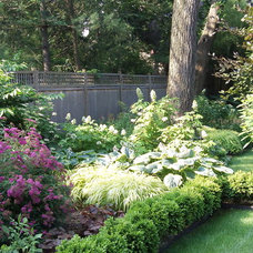 Traditional Landscape by Little Miracles Designs