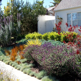 Photo of a mid-sized farmhouse full sun and drought-tolerant front yard concrete paver garden path in Los Angeles for spring.