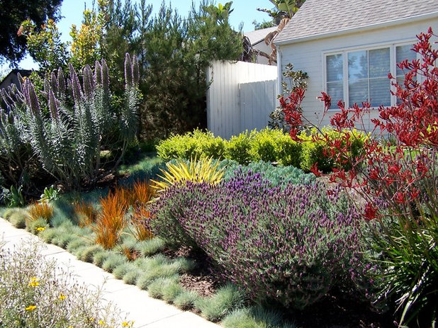 Country Garden by BE Landscape Design