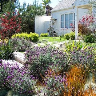 ロサンゼルスの中サイズの、春のトラディショナルスタイルのおしゃれな庭 (庭への小道、日向、コンクリート敷き) の写真