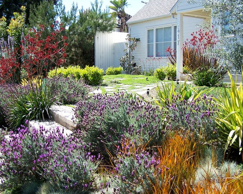 Design Ideas For A Mid Sized Traditional Full Sun Front Yard Concrete Paver  Landscaping In