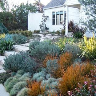 Geometrischer, Mittelgroßer Country Garten mit direkter Sonneneinstrahlung und Betonplatten in Los Angeles