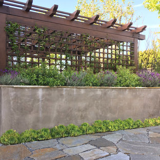 Inspiration for a small contemporary drought-tolerant and full sun backyard stone landscaping in Los Angeles for spring.
