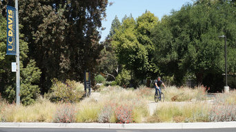 Entrance to the Mary Wattis Brown Garden of California Native Plants at the UC D