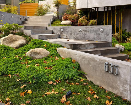 Inspiration For A Modern Hillside Landscaping In Los Angeles.