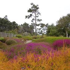Contemporary Landscape by Far Out Flora