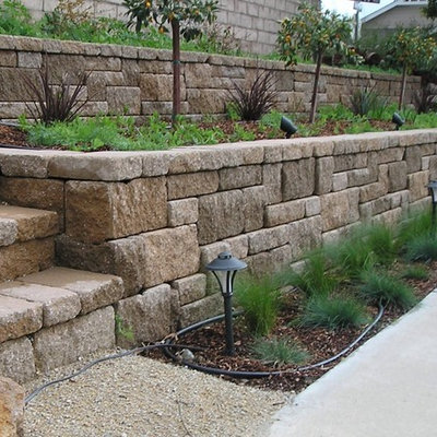 Inspiration for a mid-sized traditional drought-tolerant backyard stone retaining wall landscape in San Luis Obispo.