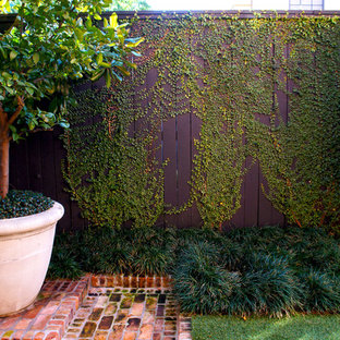 Photo of a transitional backyard brick landscaping in Houston.