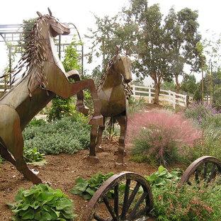 Evanson Horses