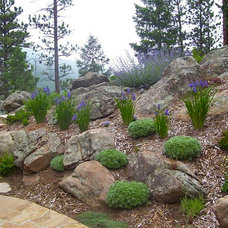 Mediterranean Landscape by Bear Creek Landscape