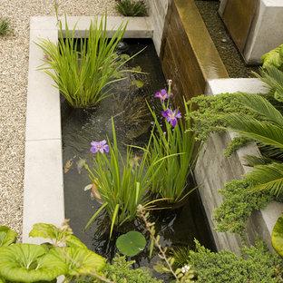 Foto de jardín vintage con fuente