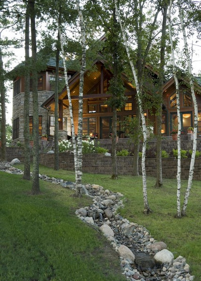 Landscaping With Paper Birch Trees : Great design plant white birch