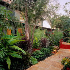 Tropical Landscape by Tom Meaney Architect, AIA