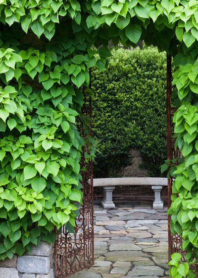 Comment composer un jardin victorien for Composer son jardin