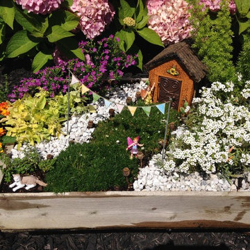 Fairy Gardens, Terrariums & Succulents