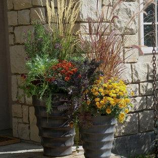 Immagine di un piccolo giardino bohémian esposto a mezz'ombra davanti casa in autunno con un giardino in vaso