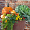 10 Standout Fall Container Gardens With Seasonal Pizazz