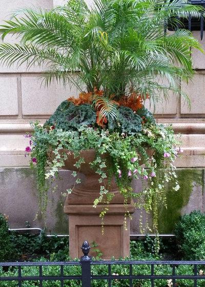 Современная классика Сад by Scott Byron & Co., Inc.