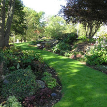 Landscape Ideas For A Wooded Backyard