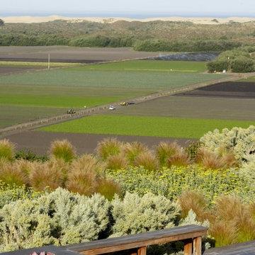 Farm Field Pacific Rim