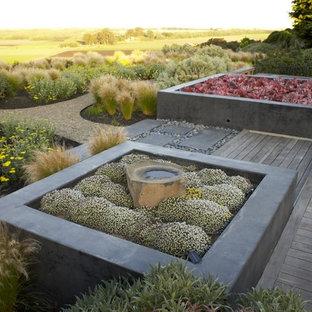 Ispirazione per un grande giardino contemporaneo esposto a mezz'ombra dietro casa con un giardino in vaso e pedane
