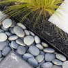 Garden Design Essentials: Texture