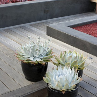 Design ideas for a large asian partial sun backyard landscaping in San Luis Obispo with decking.
