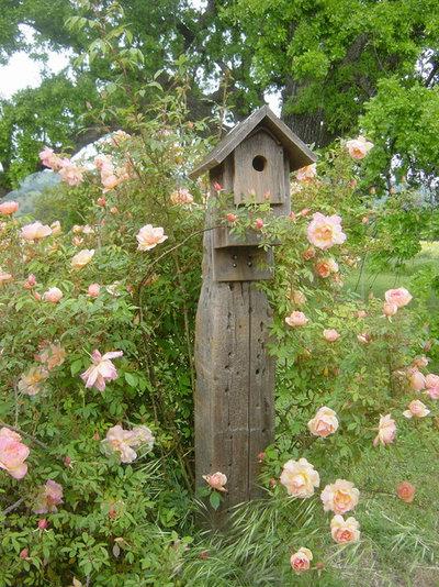 Classique Jardin by Pamela Bateman Garden Design