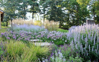 How to Take Care of Your Newly Planted Garden