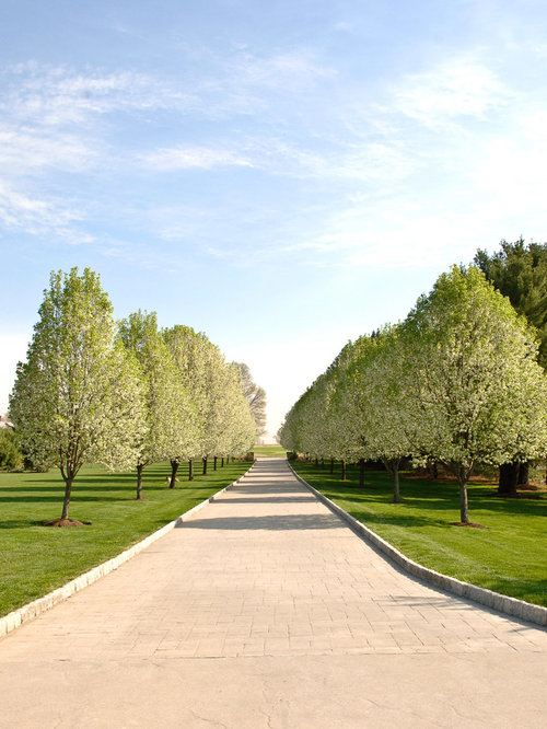 75 Most Popular Country Driveway Design Ideas For 2018