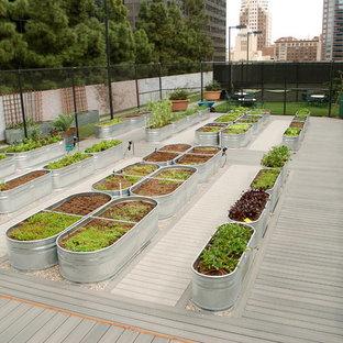Inspiration för en funkis trädgård i full sol, med utekrukor och trädäck