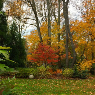 Inspiration for a rustic backyard landscaping in DC Metro for fall.